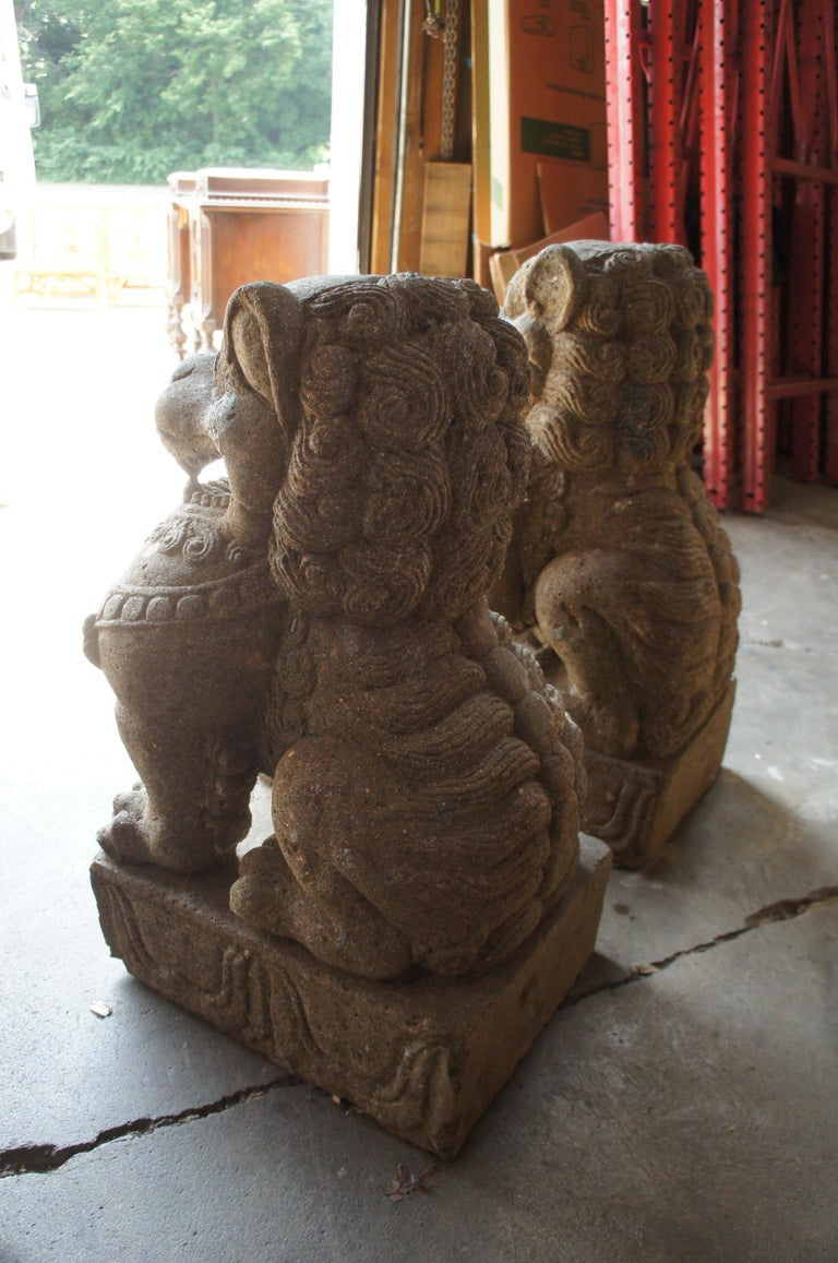 Pair of Chinese Foo Dogs Concrete Statue Guardians Lions Stone Garden For Sale 5