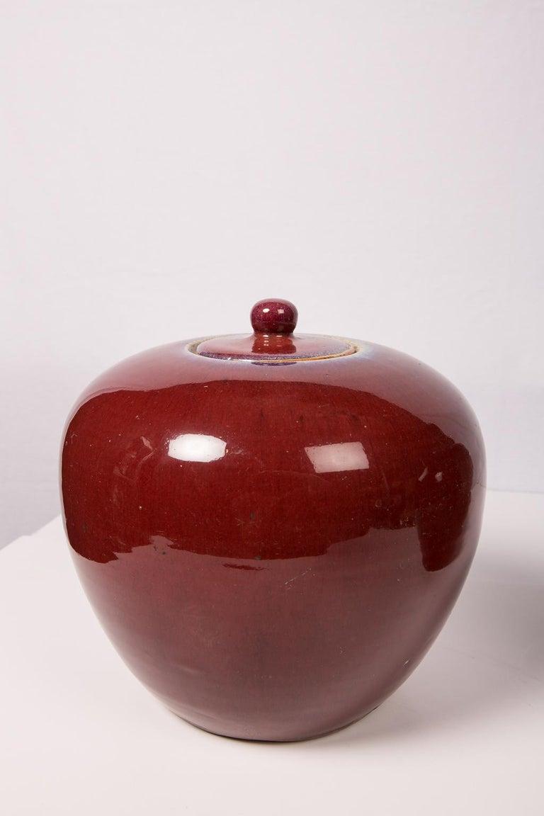 Zwei Chinesische Monochrome Rote Ingwergläser 2