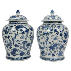 Pair of Chinese Porcelain Blue and White Covered Jars 19th Century Qing Dynasty