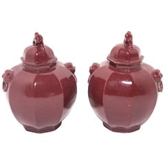 Pair of Chinese Shizi Hong Ginger Jars