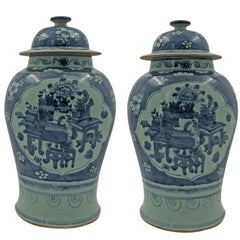 Pair of Chinese Still Life Temple Jar