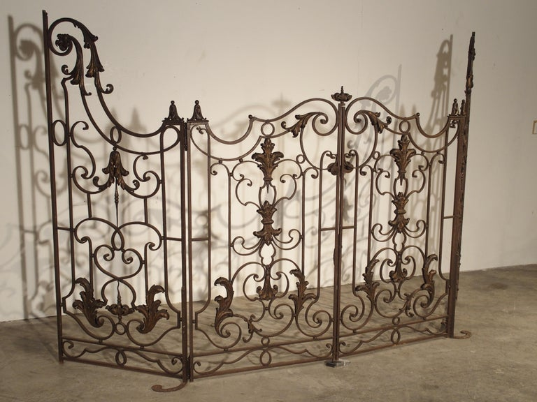 This fabulous 4 section wrought iron gate from France has beautiful scrolling motifs throughout, and it is in excellent overall condition. Some of the tole motifs have been modestly highlighted with gold lacquer. The rest of the iron gate has a worn