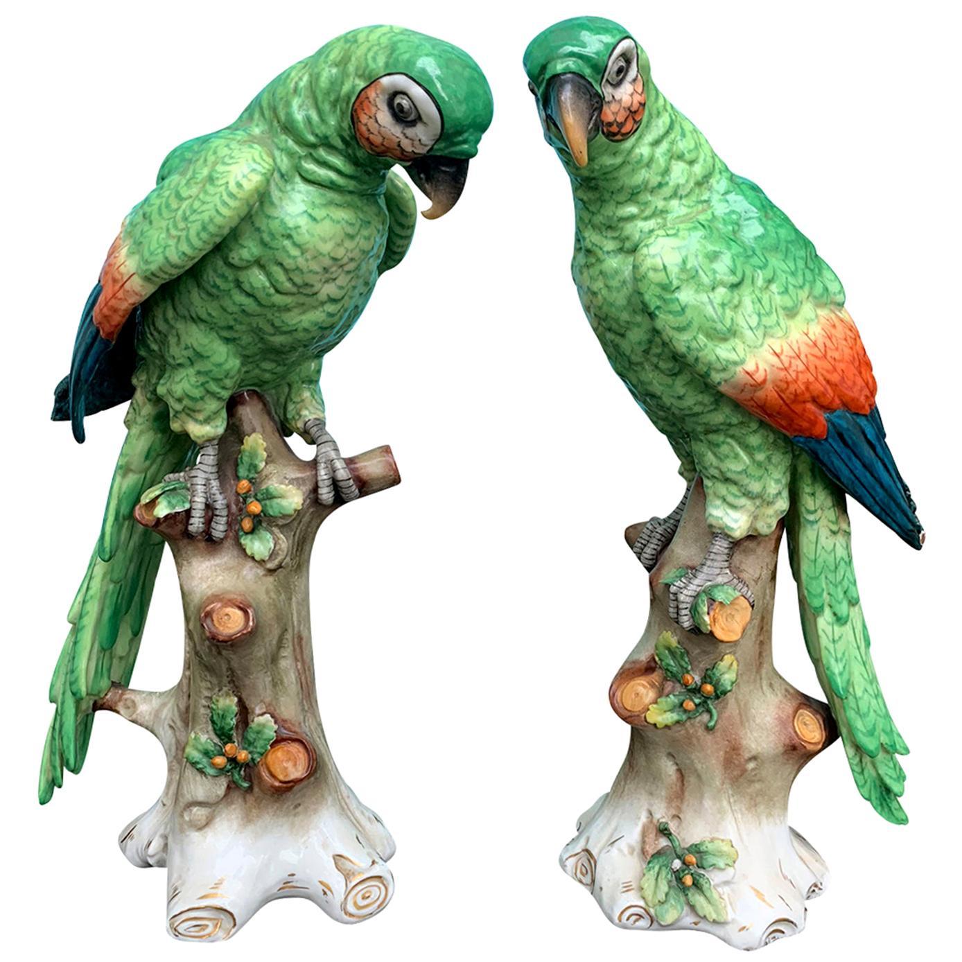 Pair of  Circa 1880s Edme Samson French Glazed Porcelain Parrots on Trunks