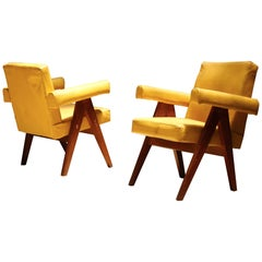 Pair of Committee Chair by Pierre Jeanneret