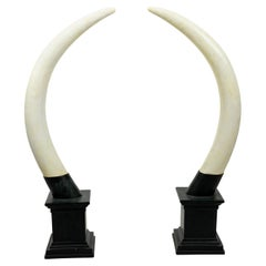 Pair of Composition Horns on Stands