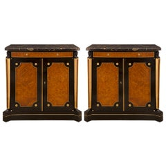 Pair of Continental 19th Century Neoclassical Style Cabinets