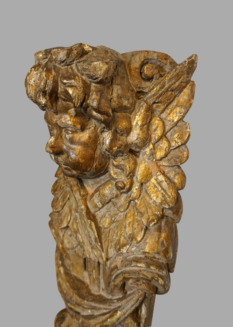 18th Century and Earlier Pair of Continental Giltwood Architectural Fragments Headed by Putti For Sale