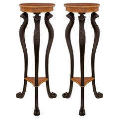 Pair of Continental Mid-19th Century Neoclassical Style Pedestals