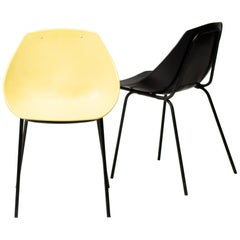 Pair of Coquillage Chairs by Pierre Guariche