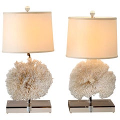 Pair of Coral Table Lamps on Lucite Base in the Style of Willy Daro
