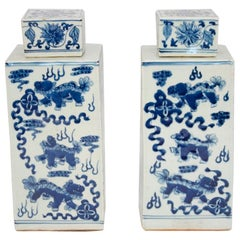 Pair of Covered Squared Pots, 20th Century