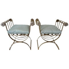 Pair of Curule Form Benches