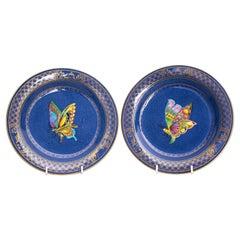 Pair of Daisy Makeig-Jones Wedgwood Butterfly Plates