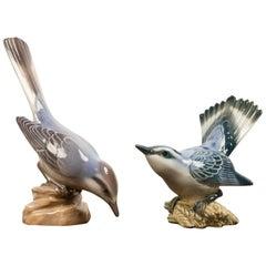 Pair of Danish Porcelain Birds by Dahl Jensen, 1930s