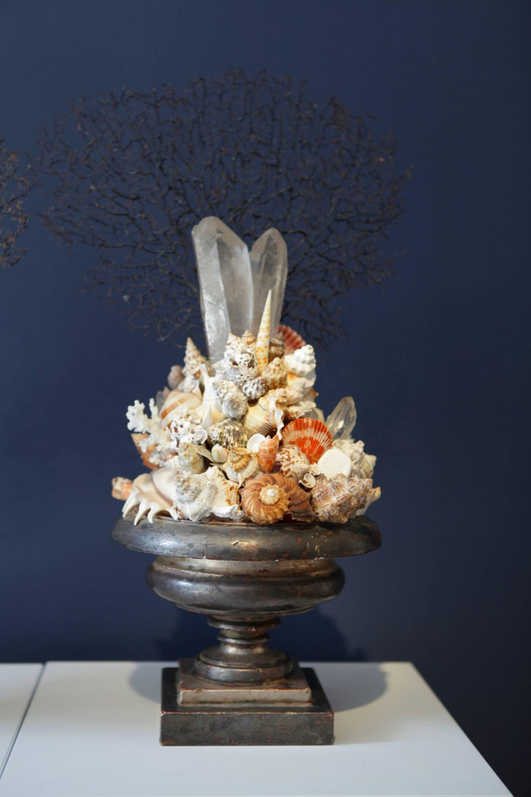 Pair of Decorative Coral Rock Crystal and Sea Shell Installations, Italy 1970s In Excellent Condition For Sale In Hamburg, Hamburg