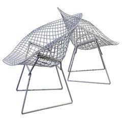 Pair of Diamond Chairs by Harry Bertoia