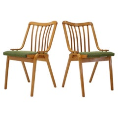 Pair of Dining Chairs Designed by Antonín Šuman, 1960s