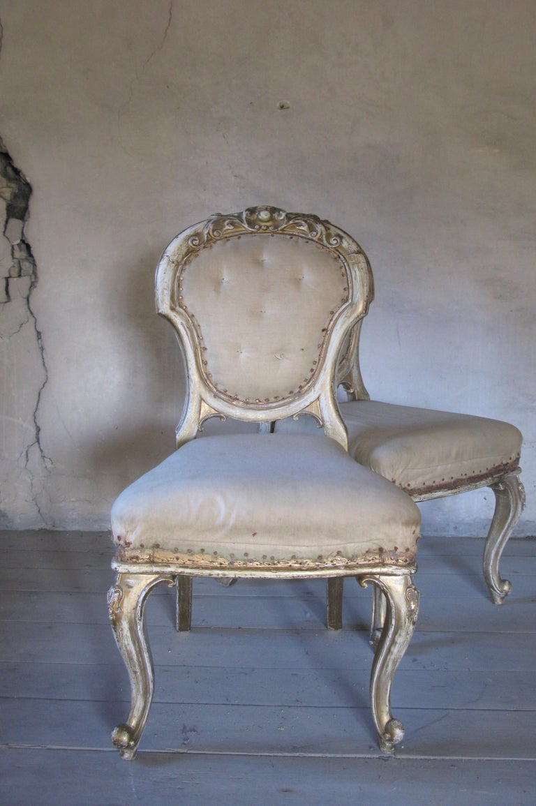 Baroque Revival Pair of Dining Chairs, French Chairs, Gilded Chairs, Side Chairs, 19th Century For Sale