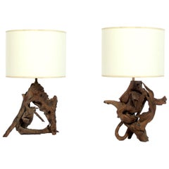Pair of Driftwood Lamps
