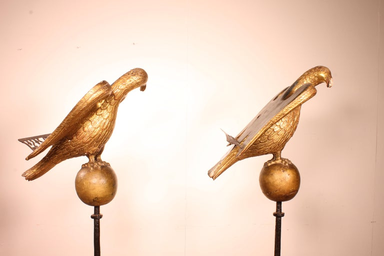 Renaissance Pair of Eagles 16th Century from North Italy Church Lectern For Sale