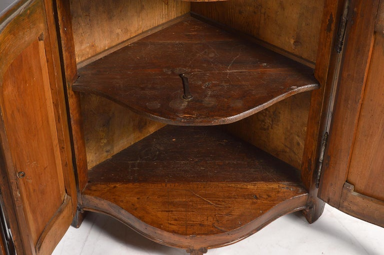 Pair of Early 19th Century Carved French Provincial Serpentine Corner Cabinets 1