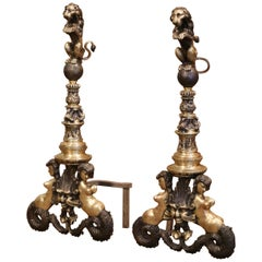 Pair of Early 19th Century English Two-Tone Bronze Andirons with Lion Sculptures