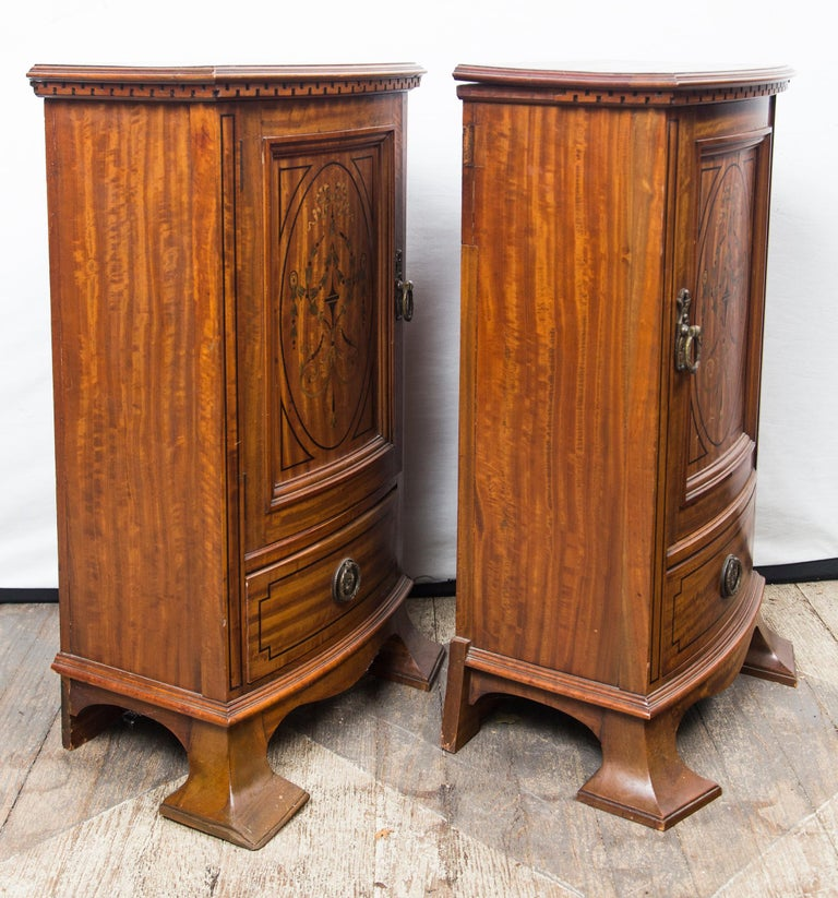 Pair of Early 20th Century Bedside Cabinets or Nightstands For Sale 4