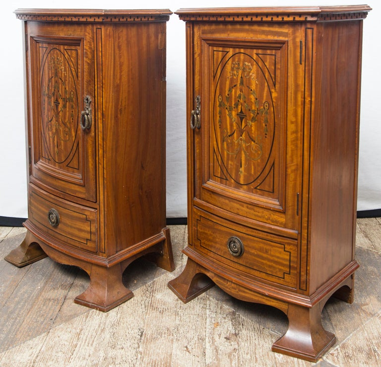 Pair of Early 20th Century Bedside Cabinets or Nightstands For Sale 5