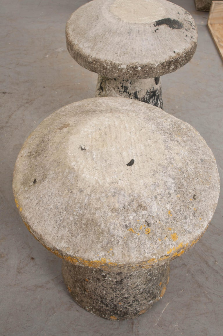 Pair of English 19th Century Staddle Stones For Sale 10