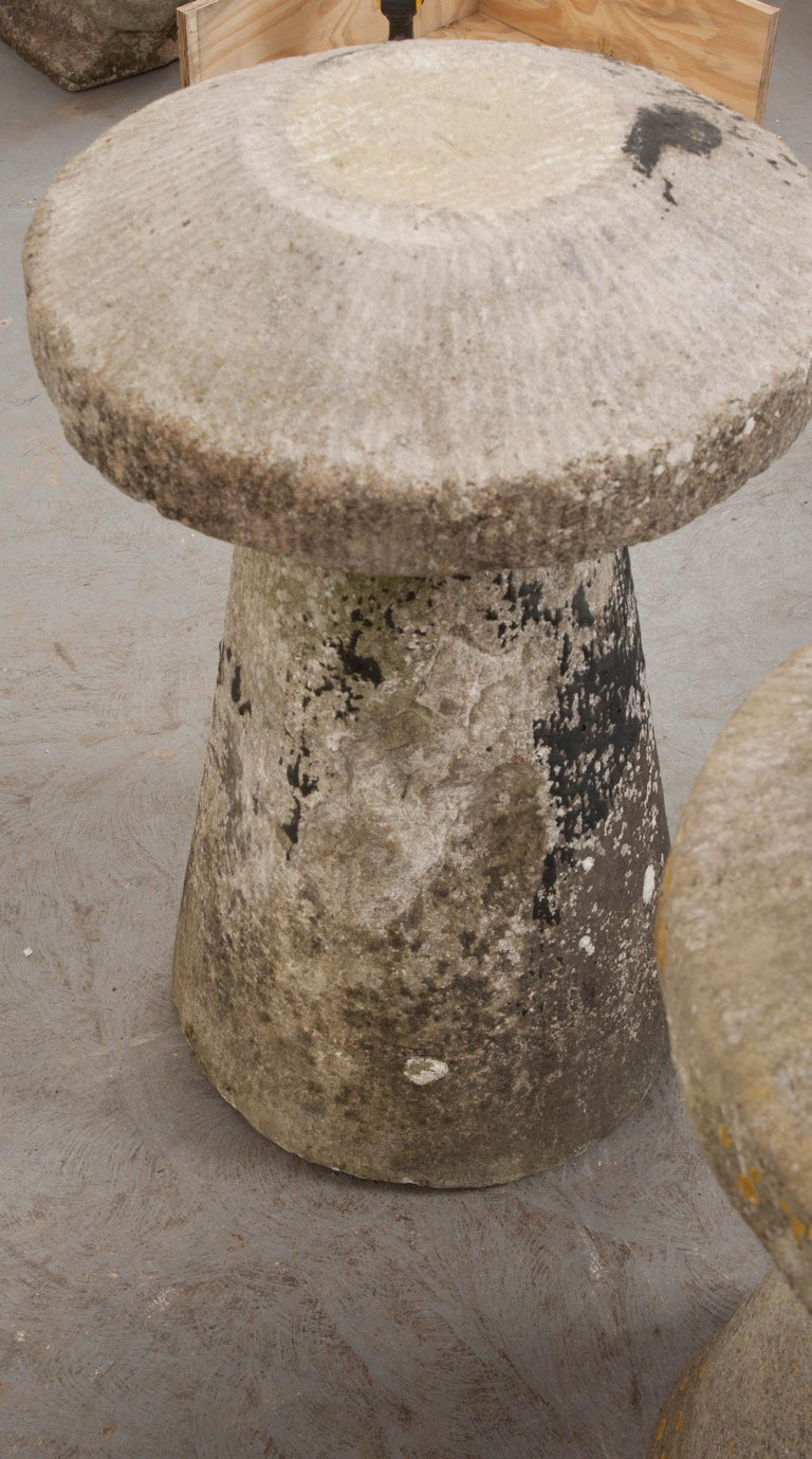Pair of English 19th Century Staddle Stones For Sale 11