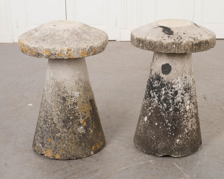 Pair of English 19th Century Staddle Stones For Sale 4