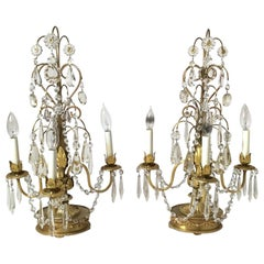 Pair of English Adam Style Gilt and Crystal Girandoles Lamps