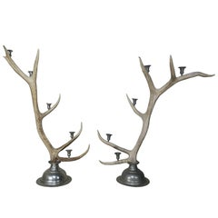 Pair of English Antler and Pewter Candleholders, circa 1900