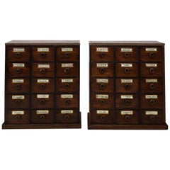 Pair of English Apothecary Chests