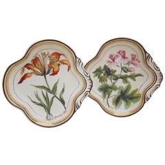 Pair of English Creamware Botanical Dishes