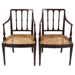 Pair of English Early 20th Century Caned Mahogany Chairs