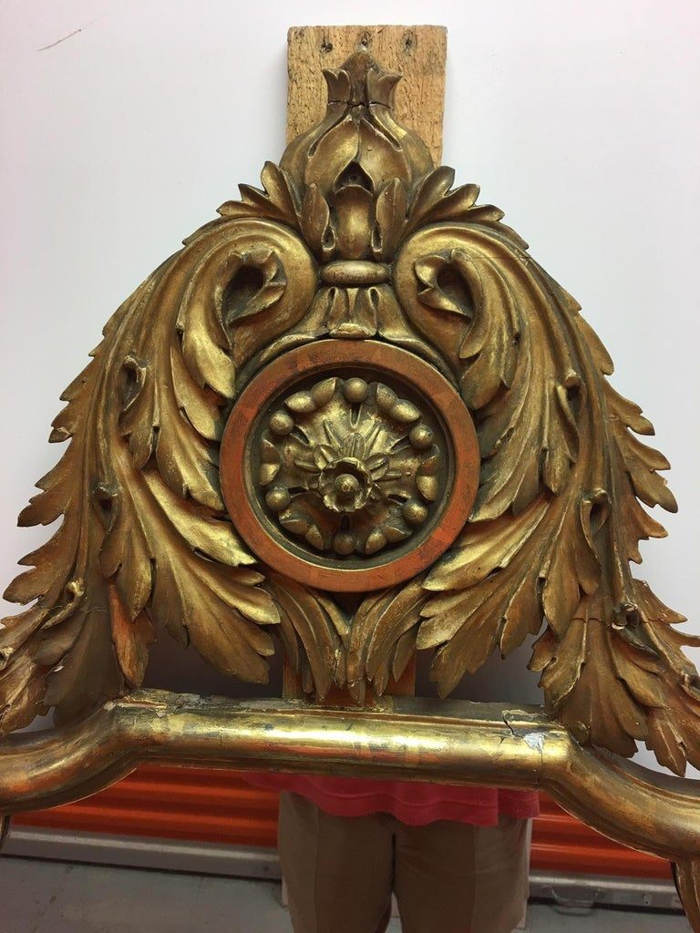 Pair of English Gold Leaf Mirrors with Acanthus Leaves and Scrolls, 19th Century In Good Condition For Sale In Savannah, GA