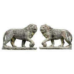 Pair of English Large Cast Stone Medici Lions, circa 1910
