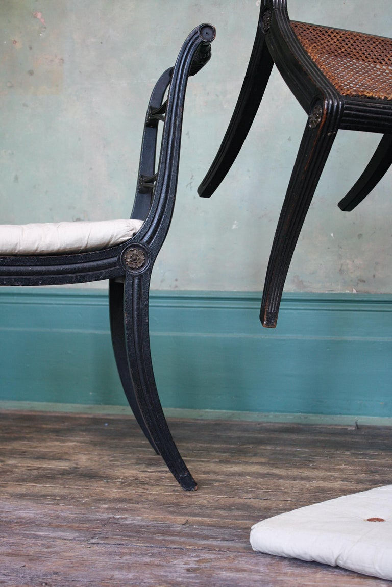 Pair of English Regency Ebonised Caned Klismos Side Chairs with Original Squabs For Sale 9
