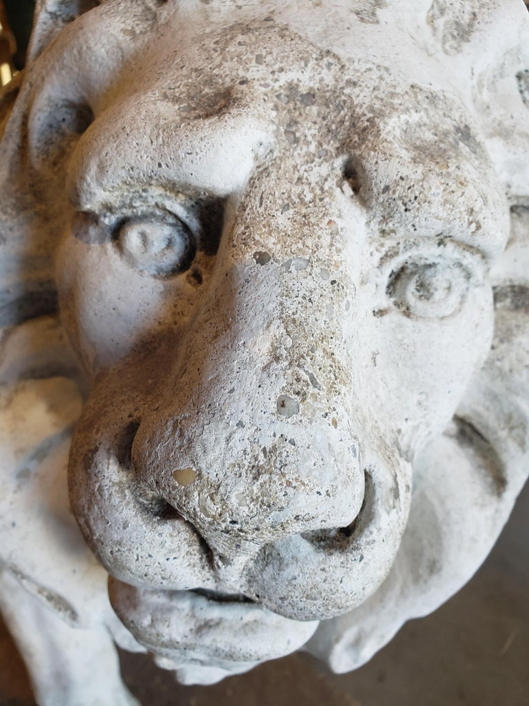 Pair of Exceptional Opposing Cement Lions with Hand Scraped Finish For Sale 5