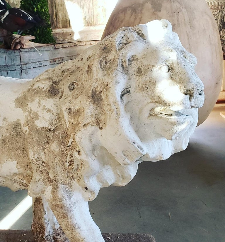 Pair of Exceptional Opposing Cement Lions with Hand Scraped Finish For Sale 8