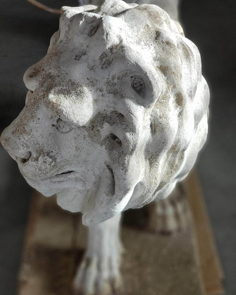 Pair of Exceptional Opposing Cement Lions with Hand Scraped Finish For Sale 10