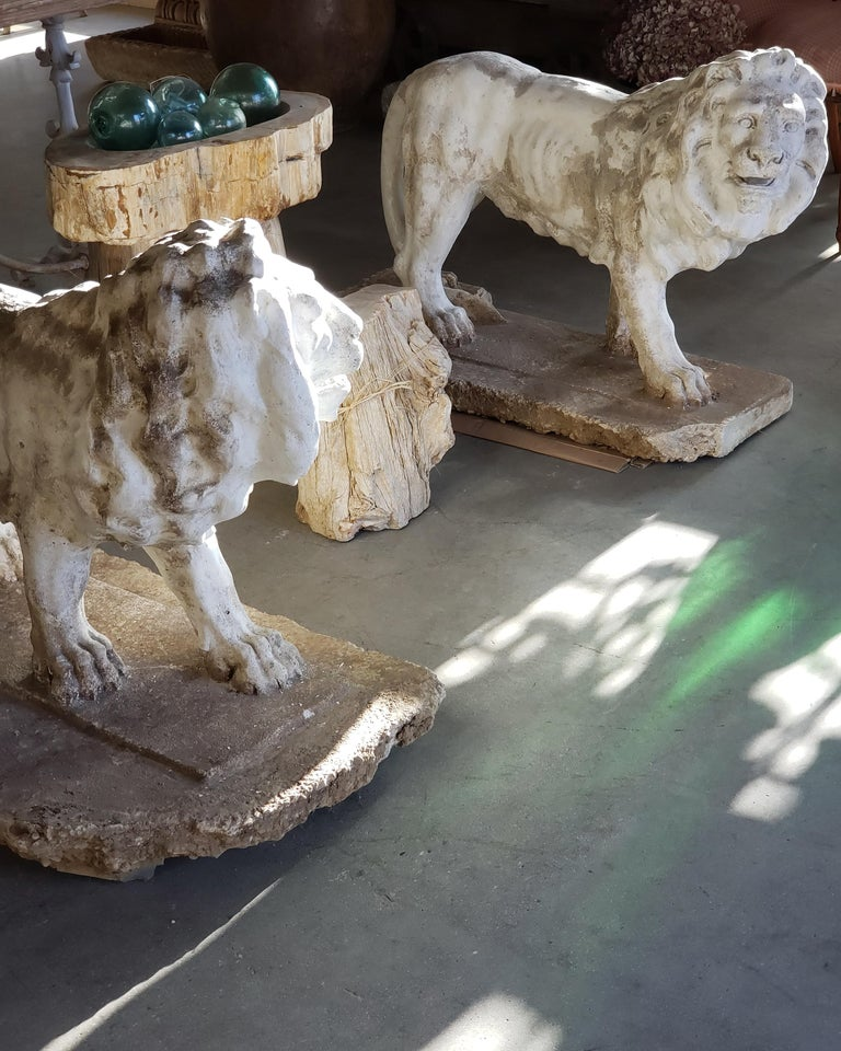 Pair of Exceptional Opposing Cement Lions with Hand Scraped Finish For Sale 11