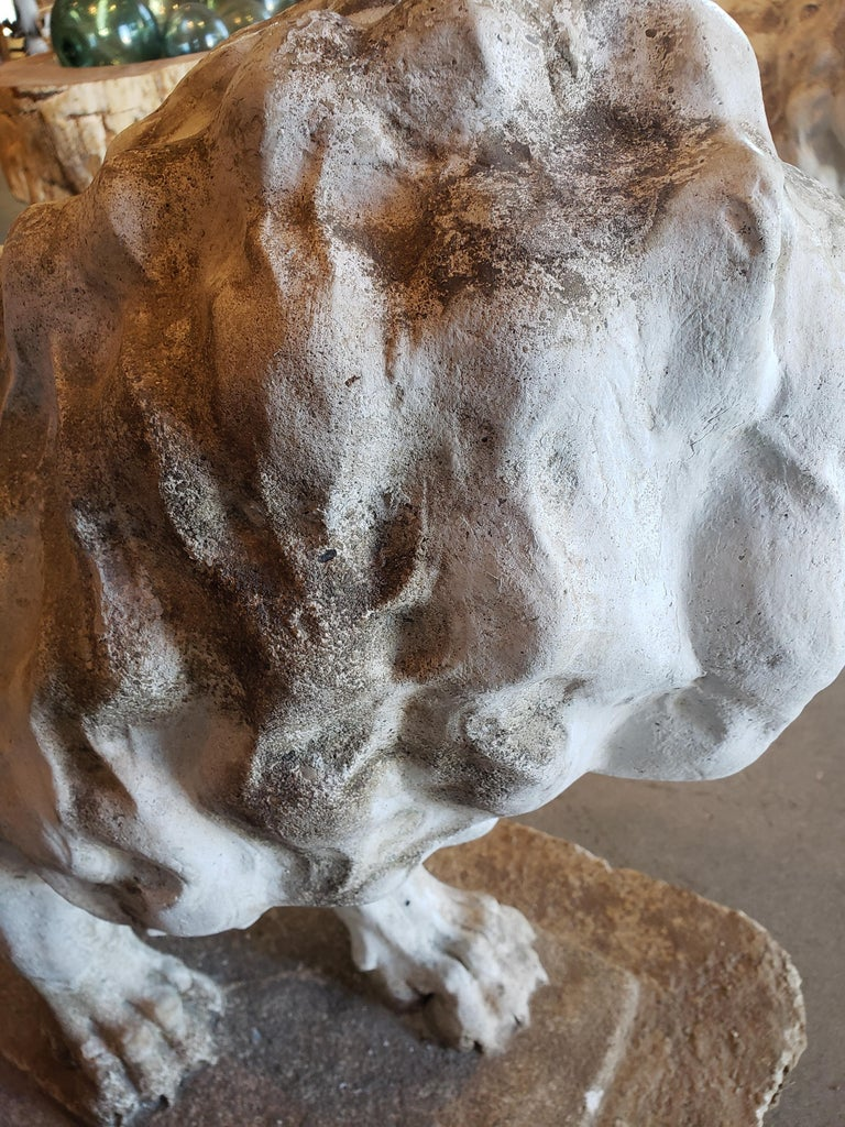 Pair of Exceptional Opposing Cement Lions with Hand Scraped Finish For Sale 1