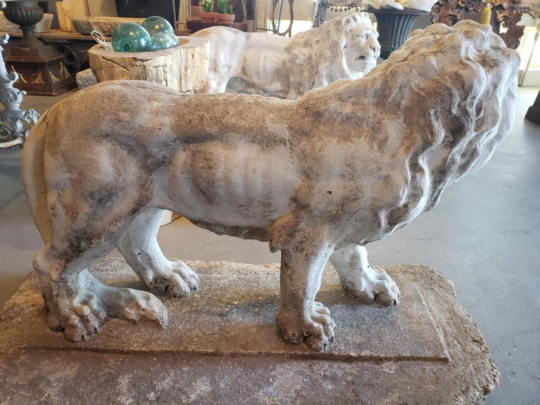 Pair of Exceptional Opposing Cement Lions with Hand Scraped Finish For Sale 3