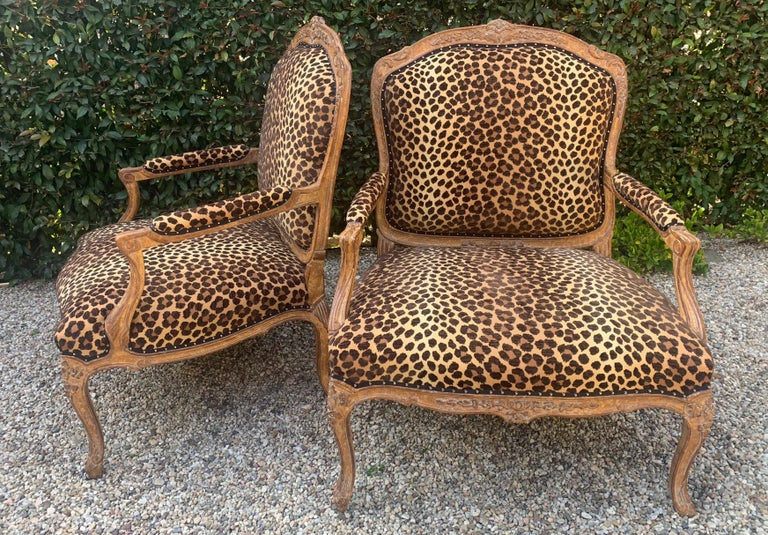 Pair of Fauteuils a la Reine in newly upholstered cut velvet leopard with a black ribbon gimp and nailheads. Extremely large and very comfortable.  Original frames manufactured in the late 20th century have a very sophisticated patinated