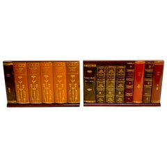 Pair of Faux Leather Book Fronts