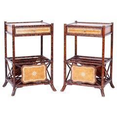 Pair of Faux Tortoise Bamboo Stands with Magazine Racks