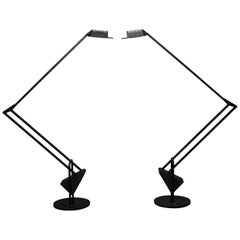 Pair of 'Flamingo' Counterweight Table Lamps by Fridolin Naef for Luxo, Italy