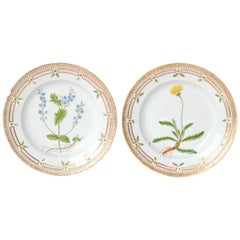 Pair of Flora Danica Plates by Royal Copenhagen #20/3573 and #20/3549